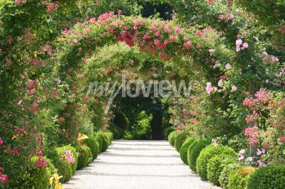 Fototapete Rosenbogen Im Garten