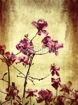 Fototapete Schöne Grunge Hintergrund mit Magnolien Blumen