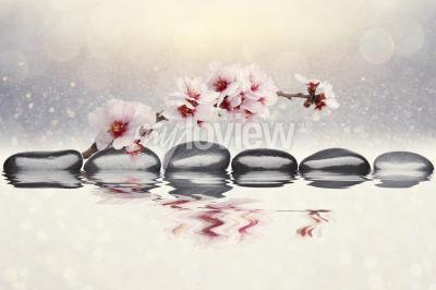 Fototapete Rosa orchidee