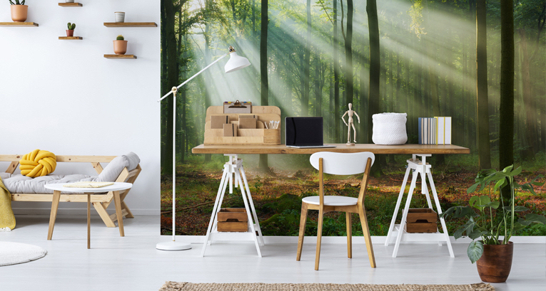 Modernes Home-Office – sehen Sie, wie Sie es einrichten können!