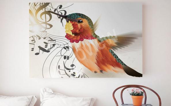 Bild bunter Vögel