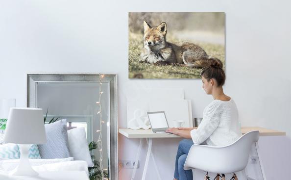 Bild eines Fuchses für das Schlafzimmer