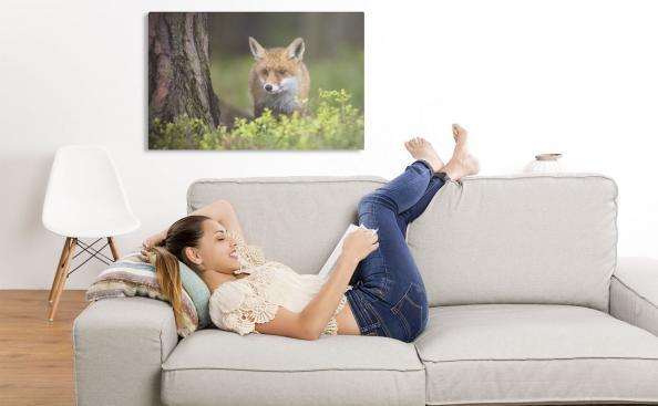 Bild eines Fuchses im Wohnzimmer