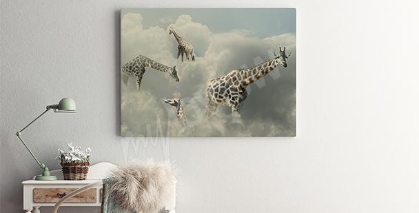 Bild Giraffen in den Wolken
