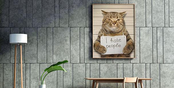 Bild Katze für Jugendzimmer