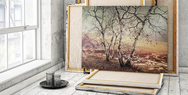 Bild Landschaft und Birken