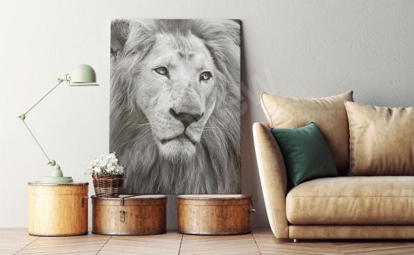 Bild Löwenbildnis in Schwarz-Weiß