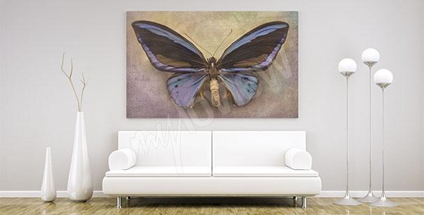 Bild minimalistischer Schmetterling