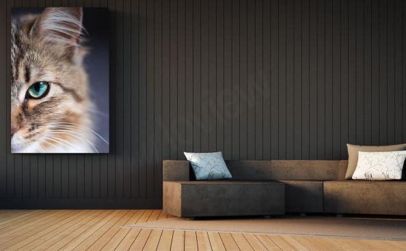 Bild mit eine gestreifte Katze