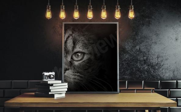 Bild mit Katzenmotiv