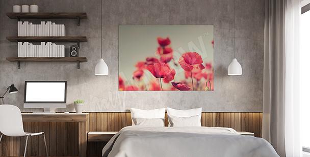 Bild Mohnblumen für Schlafzimmer