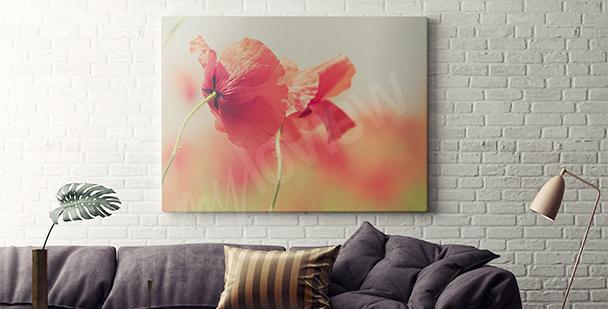 Bild Mohnblumen Retro für Wohnzimmer
