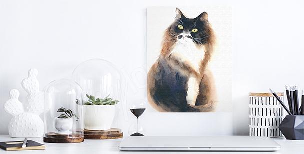 Bild mollige Katze
