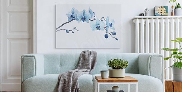 Bild Orchidee fürs Schlafzimmer