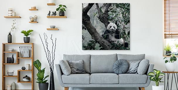 Bild Panda im Gebüsch
