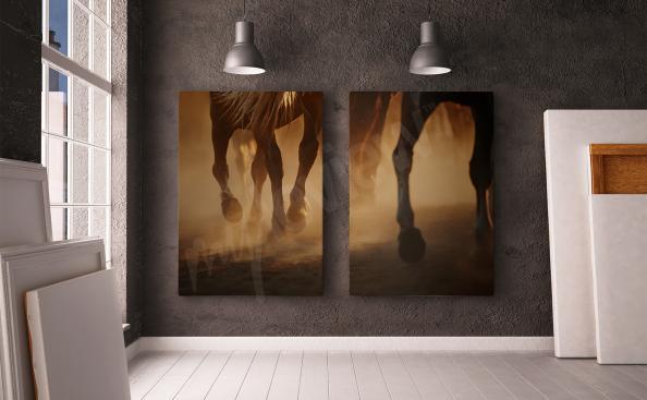Bild Pferdegangart