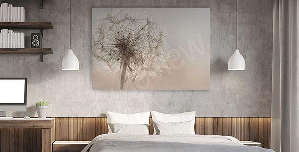 Bild Pusteblume fürs Schlafzimmer