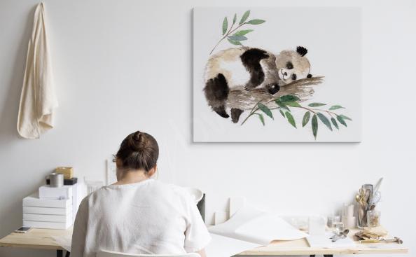 Bild schlafender Panda in einem Baum