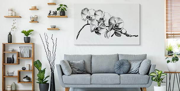 Bild schwarz-weiße Blumen