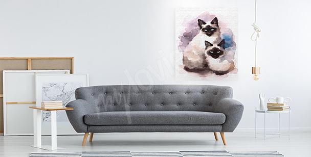 Bild Siamkatzen