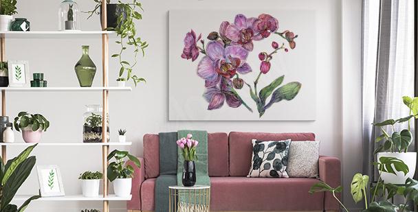 Bild weiße Orchideenblumen