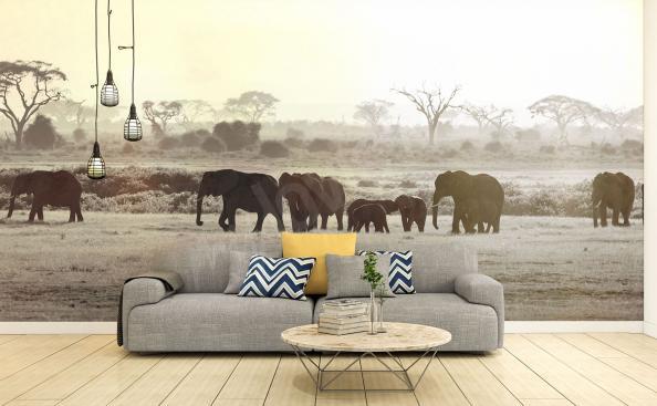 Fototapete Elefanten in der Savanne