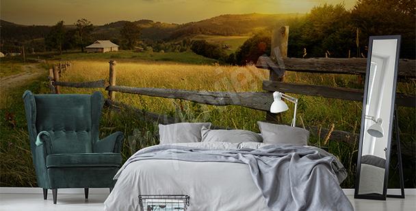 Fototapete Feld bei Sonnenuntergang