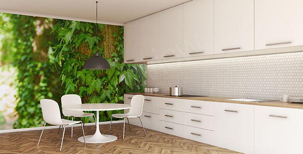 Fototapete Grün fürs Esszimmer