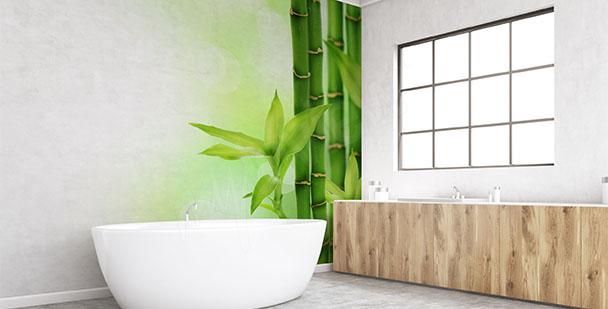 Fototapete grüner Bambus