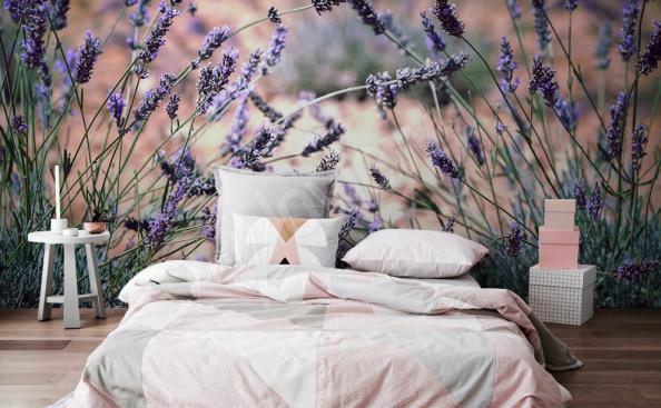 Fototapete Lavendel fur Schlafzimmer