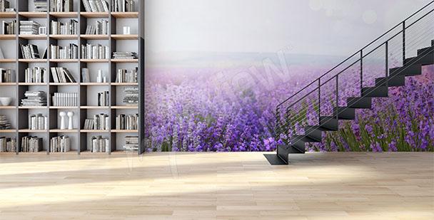 Fototapete Lavendel fürs Vorzimmer