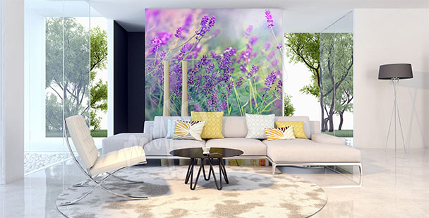 Fototapete Lavendel fürs Wohnzimmer