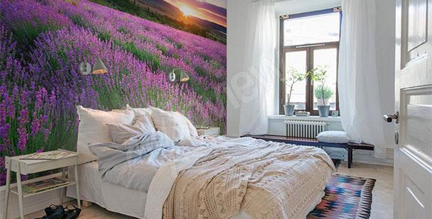 Fototapete Lavendel mit Sonnenuntergang