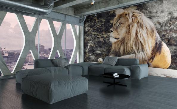 Fototapete Löwe auf den Felsen