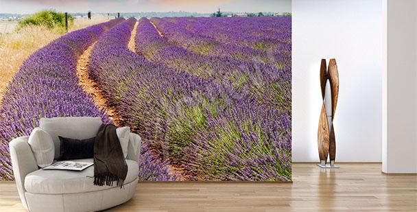 Fototapete mit Lavendel fürs Wohnzimmer