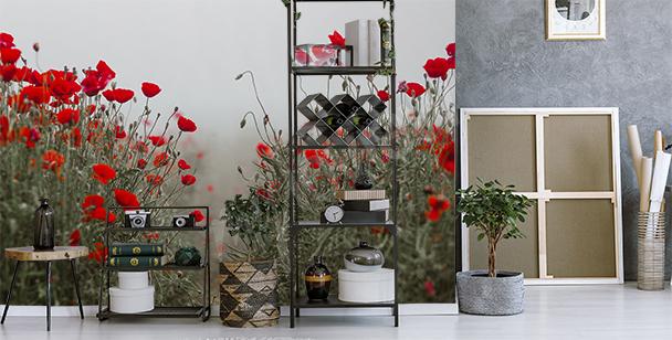 Fototapete rote Blume