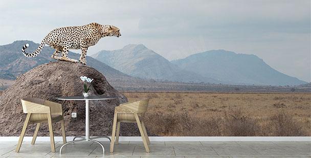 Fototapete Nationalpark in Kenia