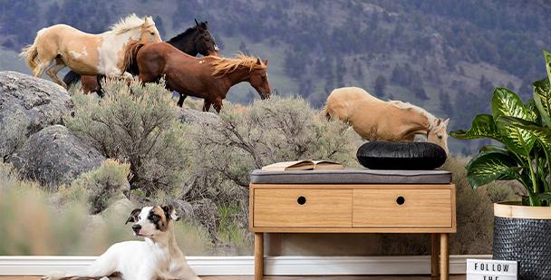 Fototapete Pferde im Galopp