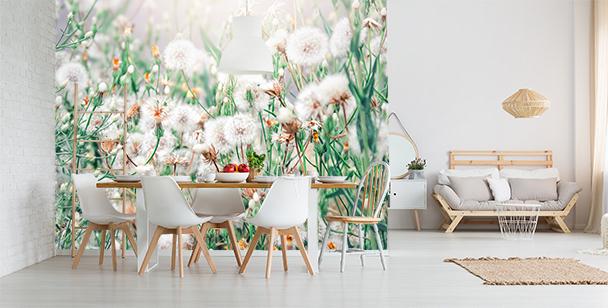 Fototapete Pusteblumen für Schlafzimmer