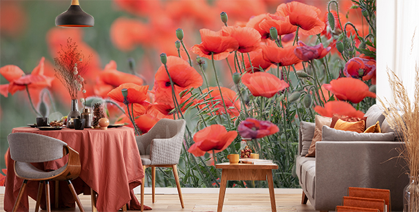 Fototapete rote Blumen