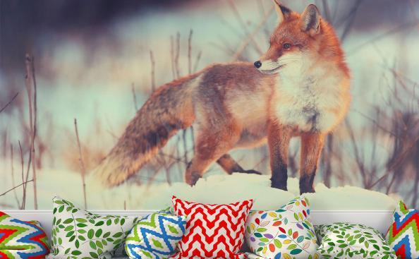 Fototapete roter Fuchs
