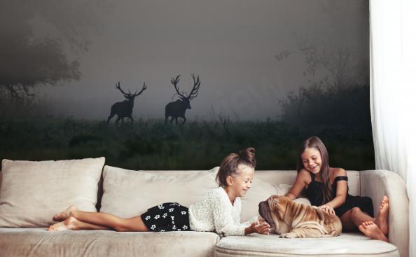 Fototapete Tiere - Hirsche im Wald