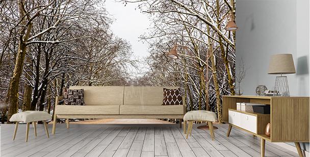 Fototapete Winterpark