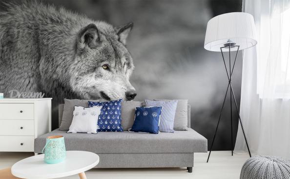 Fototapete Wolf in 3D