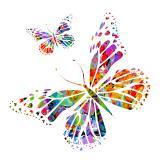 Fototapeten schmetterlinge gr e der wand - Schmetterlinge an der wand ...