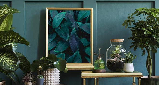 Pflanzen-Poster – 8 von Myloview empfohlene Designs