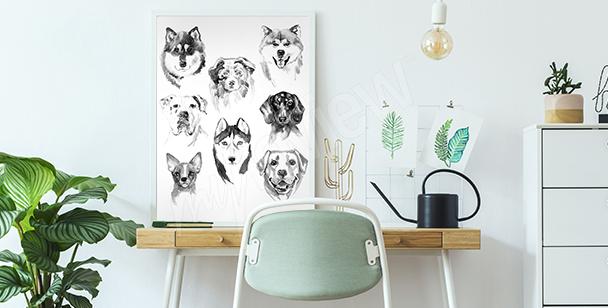 Poster Tiere für Kinder