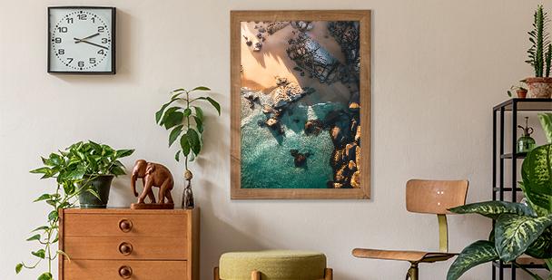 Poster Natur: Fensterblätter