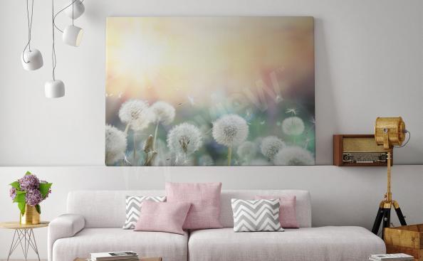Pusteblumen Bild für Wohnzimmer