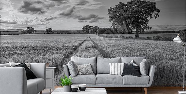 Schwarz-weiße Fototapete Feld